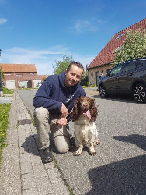 English Springer Spaniel Leon met GoBobby