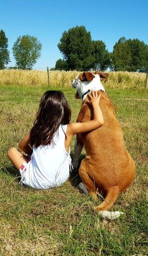 GoBobby hondentraining en gedragstherapie pitbull Bob en Laura
