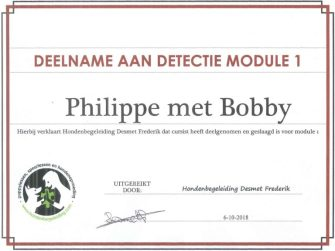 Detectie module 1