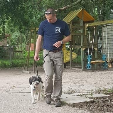 training met asielhond Buttercup