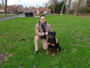 Rottweiler ecollar training