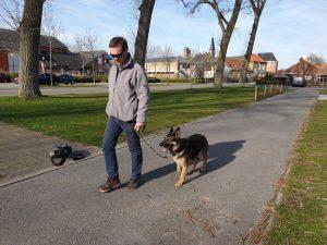 Duitse herder wandelen aan de leiband en ecollar training