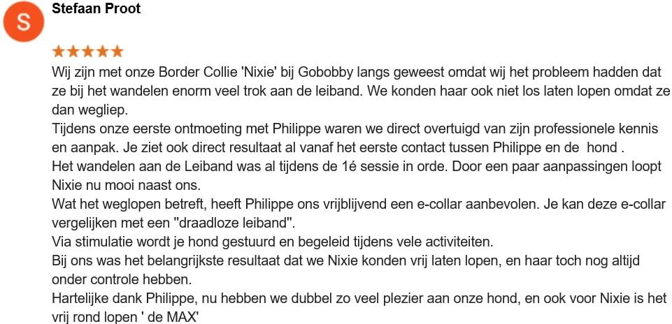 Stefaan Proot - Nixie - Border collie