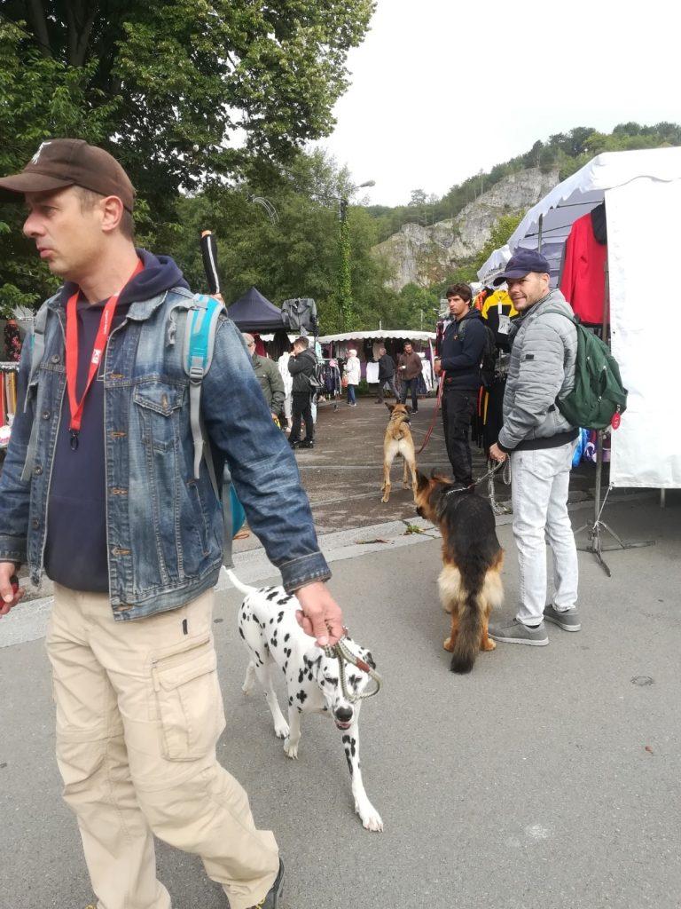 dalmatiër training op de markt