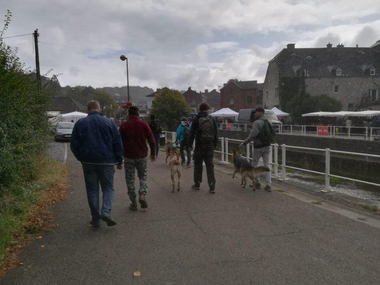 training met honden op de markt