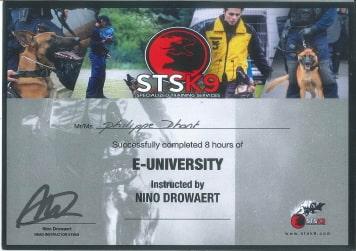 E-University certificaat