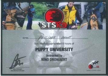 Puppy university certificaat